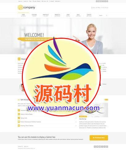 Wordpress外贸企业产品展示主题RT Theme 18 WP主题洛米 1.9.6中文汉化修改版
